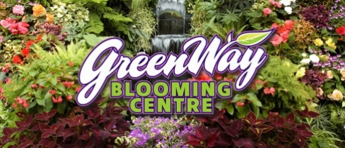 About Us Greenway Blooming Centre Kitchener