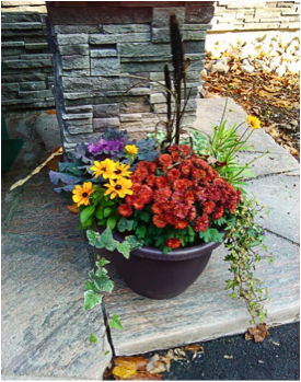 Decorating Your Garden for Fall in Kitchener Waterloo Region