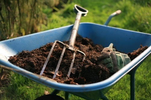 wheelbarrow fall gardening tips